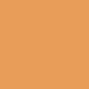 0551 Персик