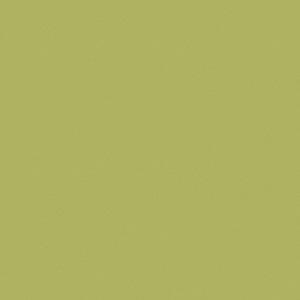 8996 Океан Зеленый