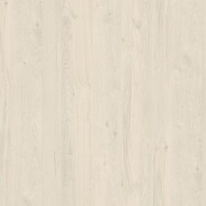 K080 Дуб Приморский Белый
